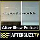 Opposite Worlds AfterBuzz TV AfterShow