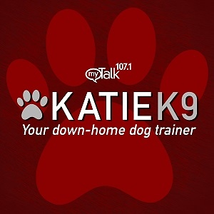 Katie K9 on MyTalk